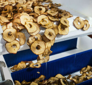The end result: dried apple chips are an example of dried produce food products.